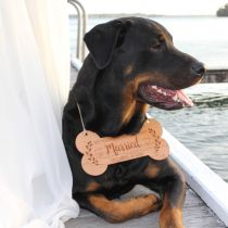 Engraved Wooden Wedding Dog Pet Sign- my humans are getting married